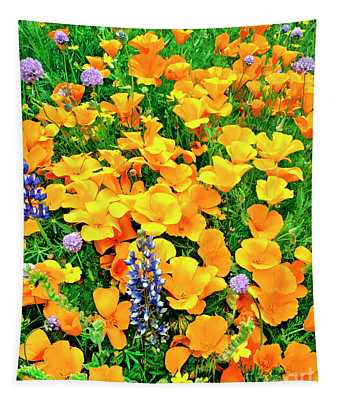 California Poppies And Betham Lupines Southern California Tapestry