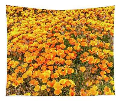 California Poppies - 2019 Tapestry