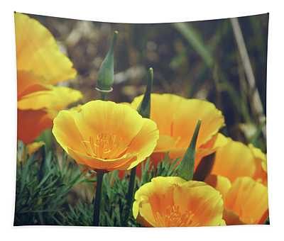 Californian Poppies In The Patagonia Tapestry