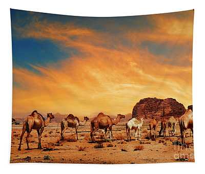 Camels In Wadi Rum Tapestry