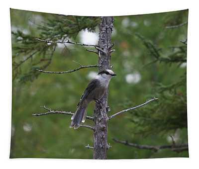 Canada Jay 101305 Tapestry
