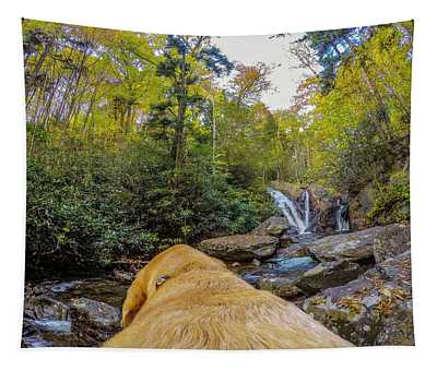 Cabin Creek Falls Tapestry