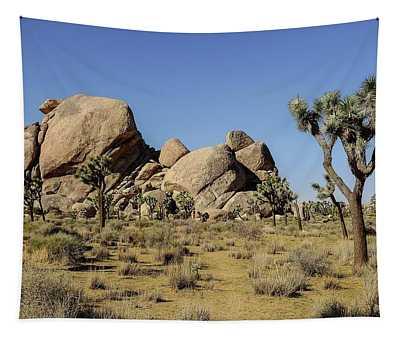 Cap Rock Area, Joshua Tree National Park Tapestry