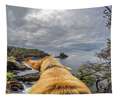Cape Flattery By Photo Dog Jackson Tapestry