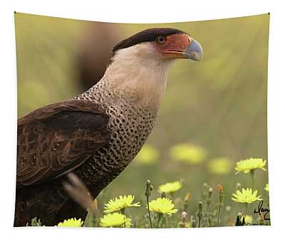 Caracara In Wildflowers Tapestry
