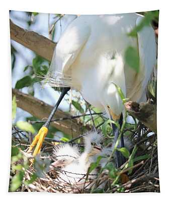 Careful Egret Mom With Chicks Tapestry