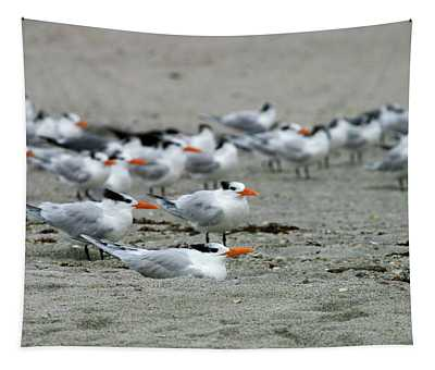 Caspian Terns Tapestry
