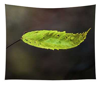 Catching Raindrops  Tapestry