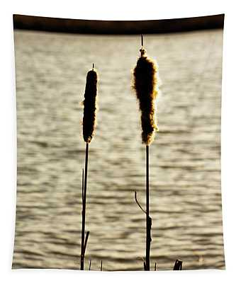 Cattails In The Sun Tapestry