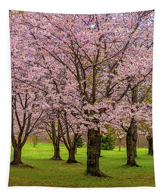Cherry Blossoms 2 Tapestry