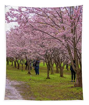 Cherry Blossoms 3 Tapestry