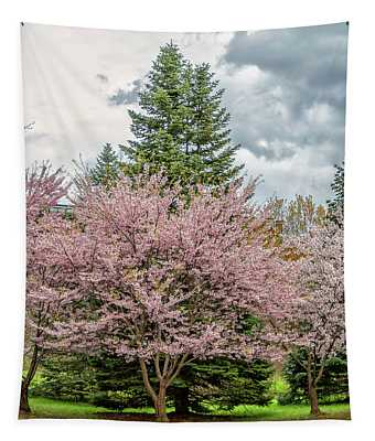 Cherry Blossoms 4 Tapestry