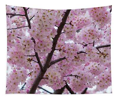 Cherry Blossoms 8611 Tapestry