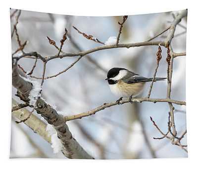 Chickadee 2018-2 Tapestry
