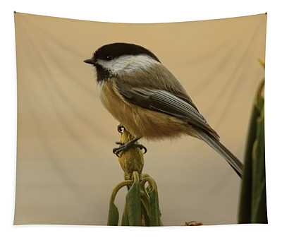 Chickadee On Rhododendron Tapestry