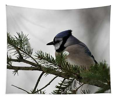 Chilly Jay Tapestry