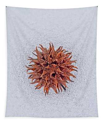 Chilly Sweetgum Tapestry