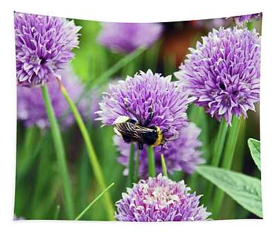 Chorley. Picnic In The Park. Bee In The Chives. Tapestry