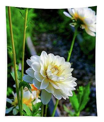 Chrysanthemum In Bloom Tapestry