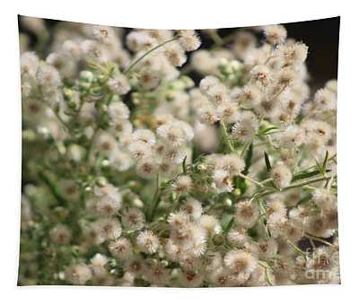 Closeup Fluffy Seed Heads Tapestry