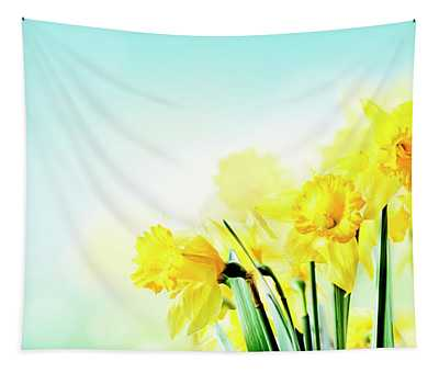 Closeup Of Beautiful Spring Daffodil Bunch In Garden With Sunlig Tapestry