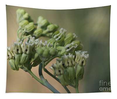 Closeup Of Desert Milkweed At Sunnyland Garden In Rancho Mirage Tapestry