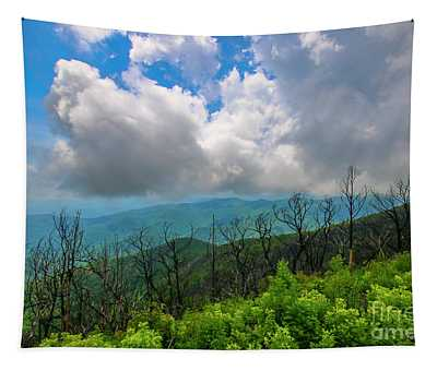Cloudy Mountain View Tapestry