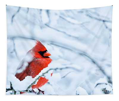 Cold Winter Tapestry