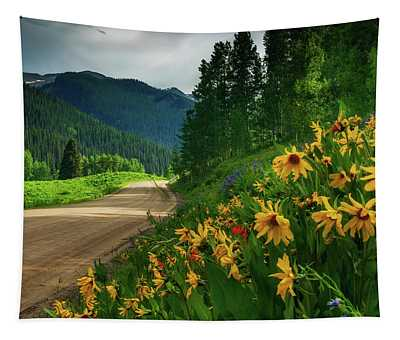 Tapestry featuring the photograph Colorado Wildflowers by John De Bord