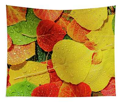 Colorful Aspen Tree Leaves On Ground In Morning Sunlight Tapestry