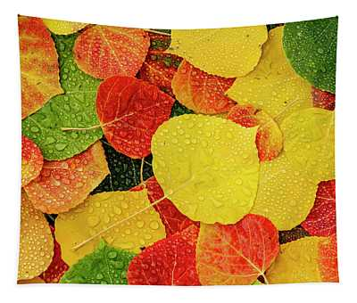 Colorful Aspen Tree Leaves With Water Drops Tapestry