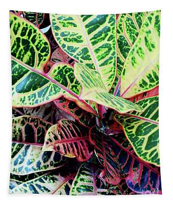 Colorful - Croton - Plant Tapestry