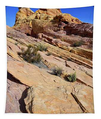 Colorful Tilted Sandstone In Valley Of Fire Tapestry