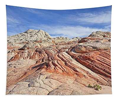 Colors And Textures Tapestry