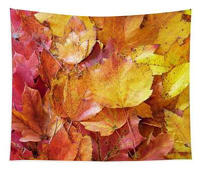 Colors Of Fall - Red To Yellow Tapestry
