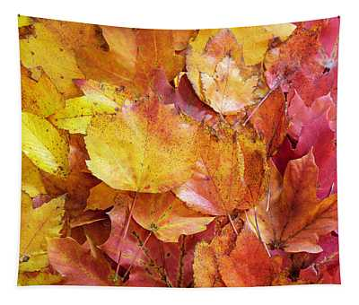 Colors Of Fall - Yellow To Red Tapestry
