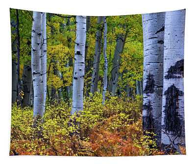 Colors Of October Tapestry