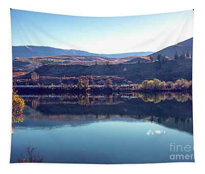 Tapestry featuring the photograph Train Reflection by Mae Wertz