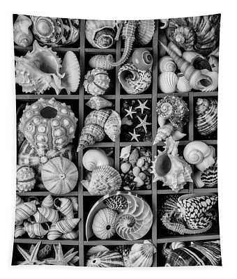Compartments Full Of Seashells In Black And White Tapestry