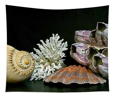 Conch Coral Clam And Barnacle 4 Tapestry