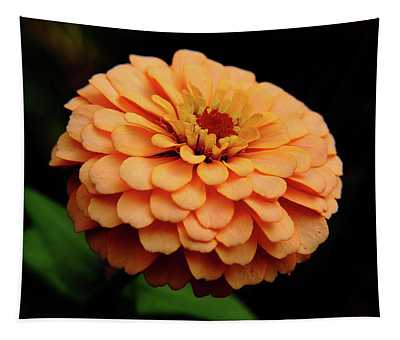 Content Zinnia Tapestry