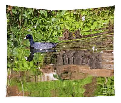 Coot In Green Tapestry