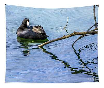 Coot With Branches Tapestry