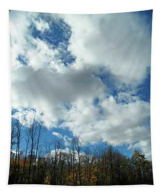 Country Autumn Curves 10 Tapestry