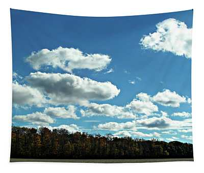 Country Autumn Curves 12 Tapestry