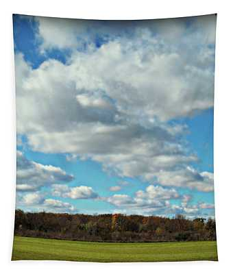 Country Autumn Curves 7 Tapestry