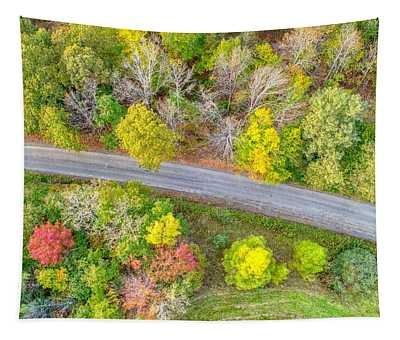 Country Path Tapestry