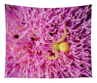 Crab Spider Tapestry
