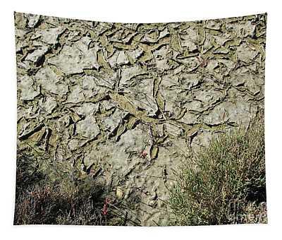 Cracked Dry Ground Tapestry