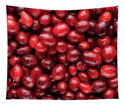 Cranberry Panorama Tapestry